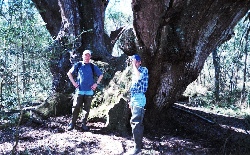 Bill Dawson (left) with biologist Andy Sipocz at Texas' largest known live oak in Brazoria County