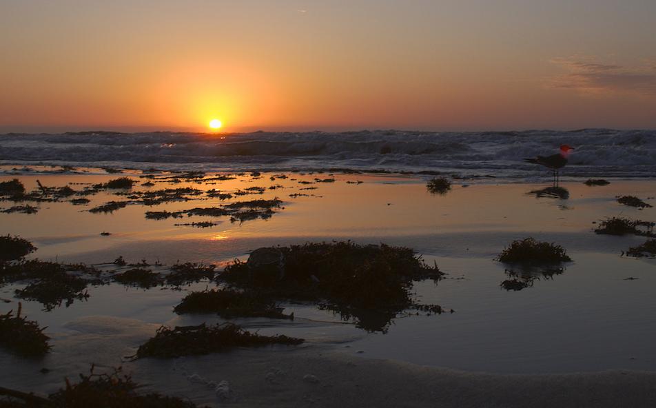 Sunrise on the Texas coast