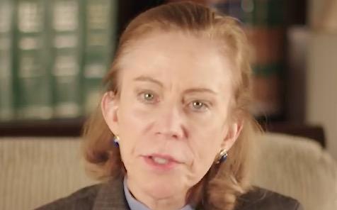 2015 video