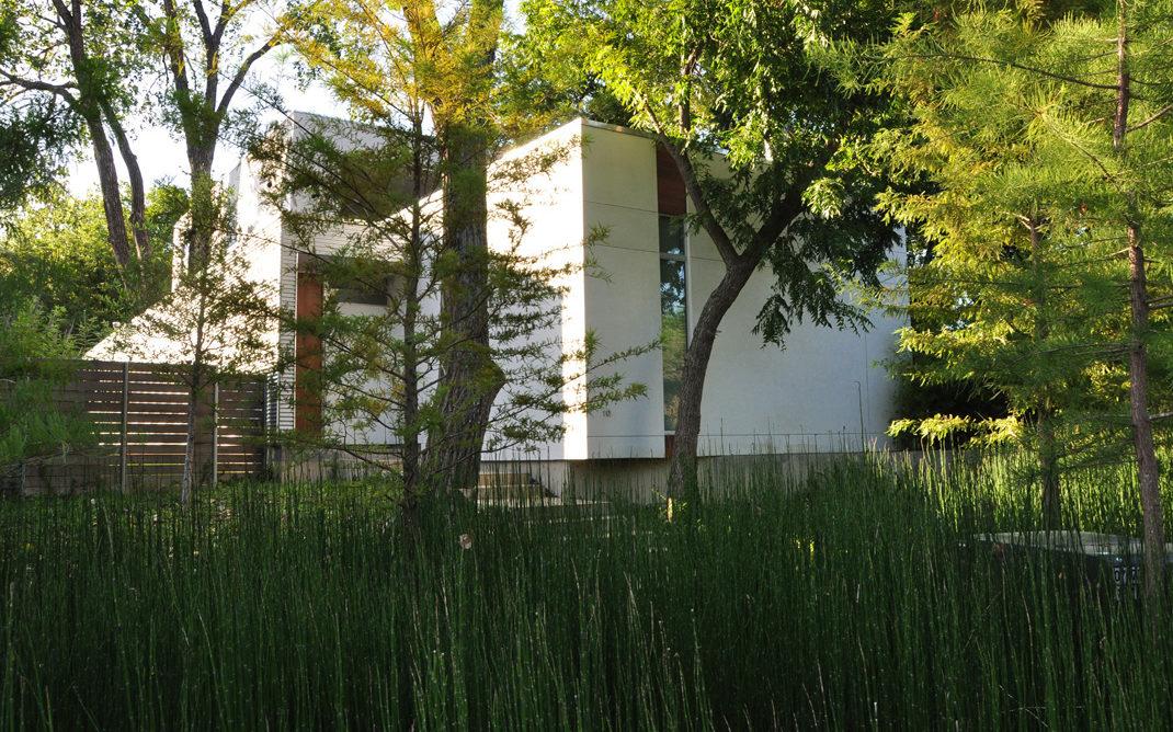 Dallas Urban Reserve