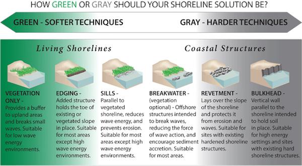 green vs. gray