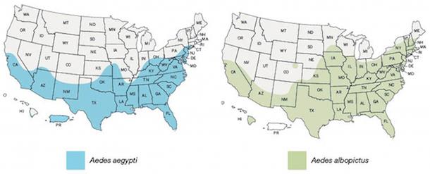 CDC: mosquito range