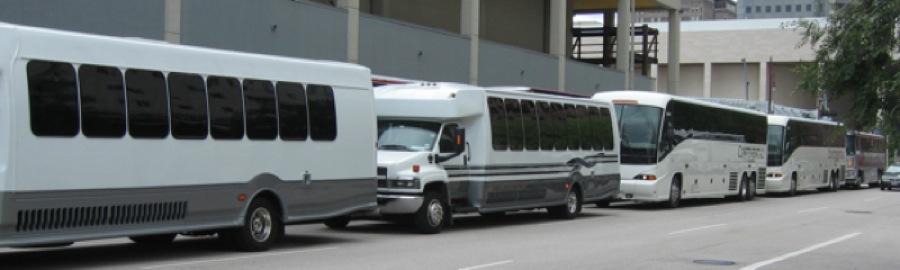 Rally buses