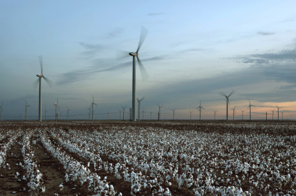 Windmills and cotton